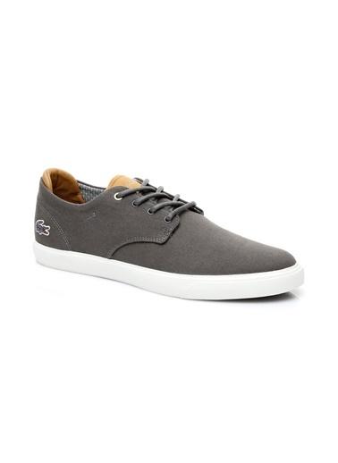 Lacoste Lifestyle Ayakkabı Renkli